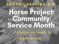 SC 4-H Horse Project Community Service Challenge
