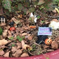 Fall Fest in the Sussex Demonstration Garden