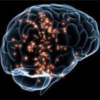 Inhibitory and Excitatory Synaptic Neuro-Adaptations Underlying Diazepam Tolerance