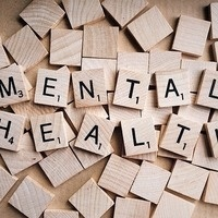 Mental Health Mondays: Dogs at the Duck Nest