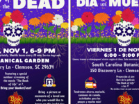 A Vibrant Celebration of Life: Day of the Dead