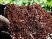 DIY Composting