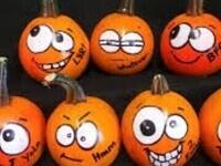 Pumpkin Judging Contest