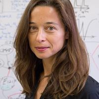 Prof. Anastassia N. Alexandrova (UCLA)