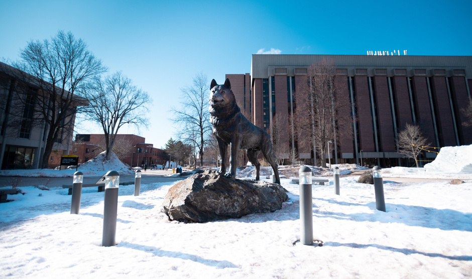 Husky Statue in the winter
