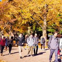Students on campus in the fall