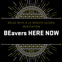 BEavers HERE NOW: Guided Meditation Sessions