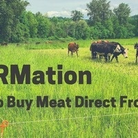 InFARMation - Buying meat direct from farm