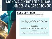 """Indonesia's Intricacies: Rhinos, Lorises, & a Dab of Dengue"""