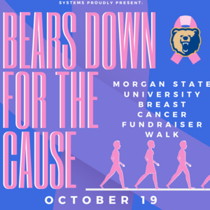Bears Down For The Cause Breast Cancer Walk