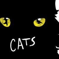POSTPONED: Cats