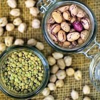 Faculty & Staff Wellness Program: Seeds, Beans, and Grains
