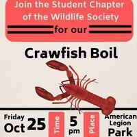 Crawfish Boil Dinner