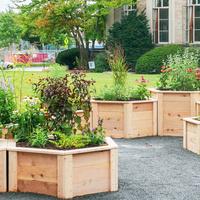 The Hive Pollinator Garden Open House