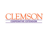 Library Resources Webinar - Hosted by the Division of Assessment and Scholarship with Clemson Libraries