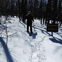 Hello Winter Hike