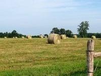 Farmland Webinars