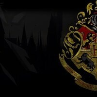 Harry Potter Day Camp: Adults Only!