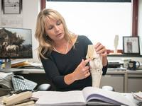 Cornell Equine Seminar Series: How might stem cells work for arthritis?