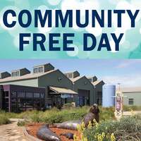 Community Free Day at the Seymour Marine Discovery Center