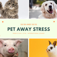 Pet Away Stress (PAWS)