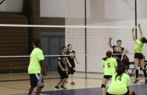 CANCELED: 16th Annual Co-Ed Volleyball Tournament