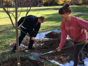 6th Annual Tree Planting Event