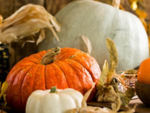 Pitt-Greensburg: Thanksgiving Recess