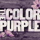 """""""The Color Purple"""" Educational Experience"""