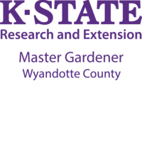 WyCo Extension Master Gardeners: Plants That Add Interest in the Winter