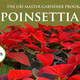 Cooperative Extension Poinsettia Presale for URI Community