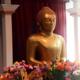 Student gathering | Buddhist Practice 101