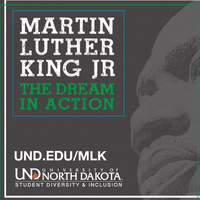 MLK- The Dream In Action Award Reception