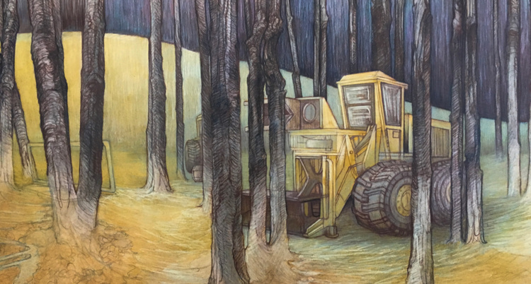Contested Grounds Drawings by Visual Arts Alumna Carly Drew