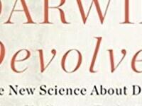 Darwin Devolved