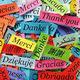 World Languages Showcase