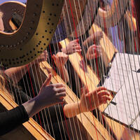 Harp! The Herald Angels Play! featuring the American Youth Harp Ensemble