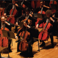 Richmond Symphony Youth Orchestra Side-by-Side with the Richmond Symphony