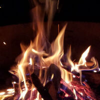 Campfire Tales: Samuel's Favorites