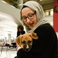 Ekstrom Library's Pause for Paws