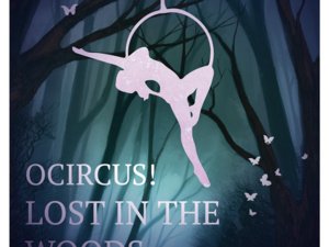 illustration of a woman circus performer in a  circular swing.
