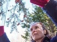"""New Developments in Municipal Arboriculture""- Jeanne Grace"