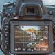 Continuing Education: Intermediate Digital Photography (McAllen)