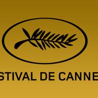 Cannes Film Festival Informational Presentation