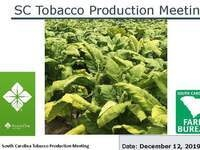 SC Tobacco Production Meeting Flier