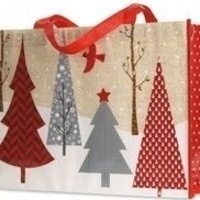 Tween Time: Gift Wrapping Workshop
