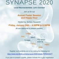 Synapse 2020