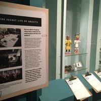 Exhibit in progress in CU Museum's  Anthropology Hall.