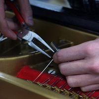 hands with pliers working on interior of piano