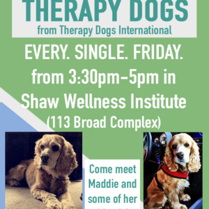 Pet a Therapy Dog!
